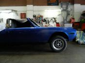 restorations-blue-stag-5